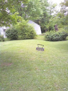 """3rd """"Level"""" of Lawn"""